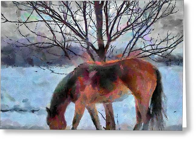 American Paint in Winter Greeting Card by Jeff Kolker