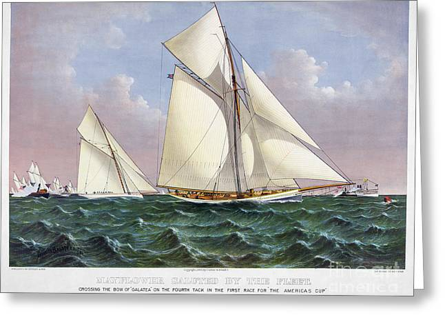 Galatea Greeting Cards - Americas Cup, 1886 Greeting Card by Granger