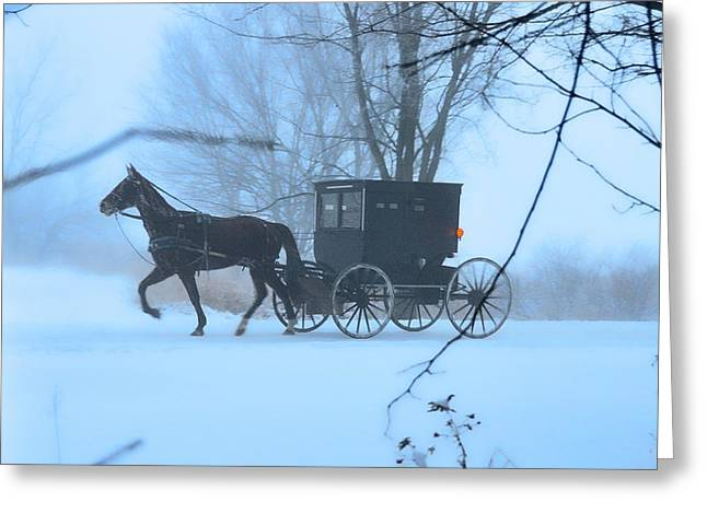 Horse And Buggy Greeting Cards - Amish Dreamscape Greeting Card by David Arment