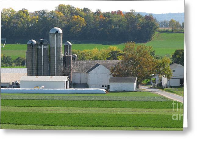 Amish Farms Greeting Cards - Amish Farm Greeting Card by Jack Schultz