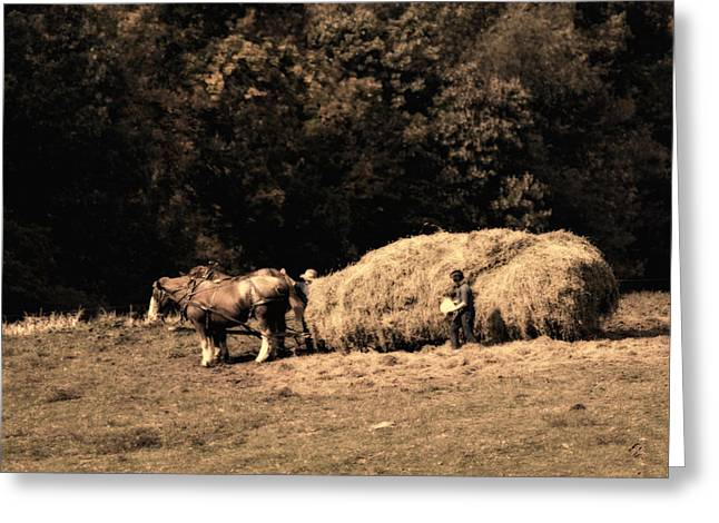 Amish Farm Greeting Cards - Amish Hay Wagon Greeting Card by Tom Mc Nemar