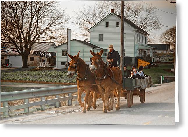 Horse And Cart Greeting Cards - Amish Wagon Greeting Card by Heidi Reyher