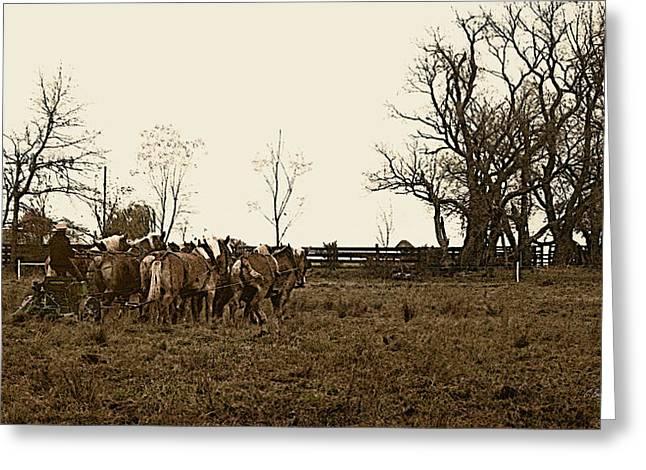 Amish Greeting Cards - Amish Ways Greeting Card by Gordon Beck