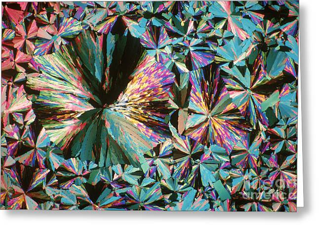 Chemical Compound Greeting Cards - Ammonium Nitrate Greeting Card by Michael W. Davidson