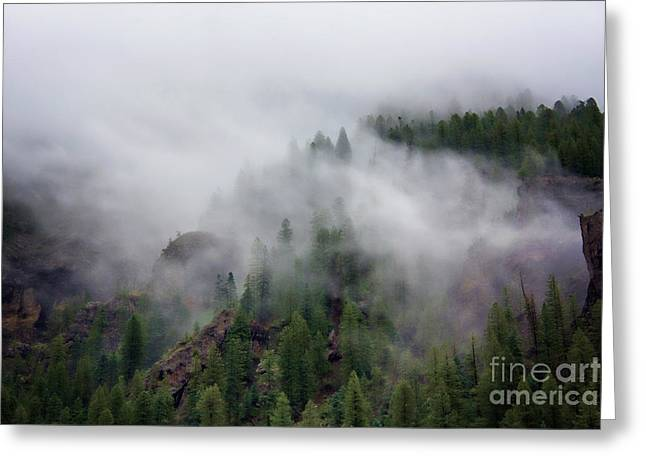 Wolf Creek Photographs Greeting Cards - Among The Clouds Greeting Card by Lana Trussell