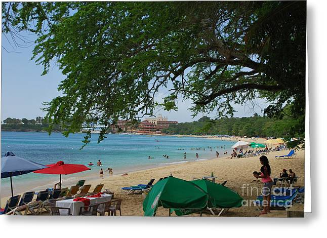 Heather Kirk Greeting Cards - An Active Sosua Beach in DR Greeting Card by Heather Kirk