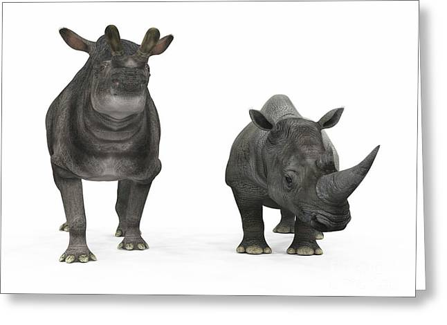 Large Scale Digital Art Greeting Cards - An Adult Brontotherium Compared Greeting Card by Walter Myers