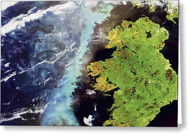Plankton Greeting Cards - An Algae Bloom Off The Coast Of Ireland Greeting Card by Esa