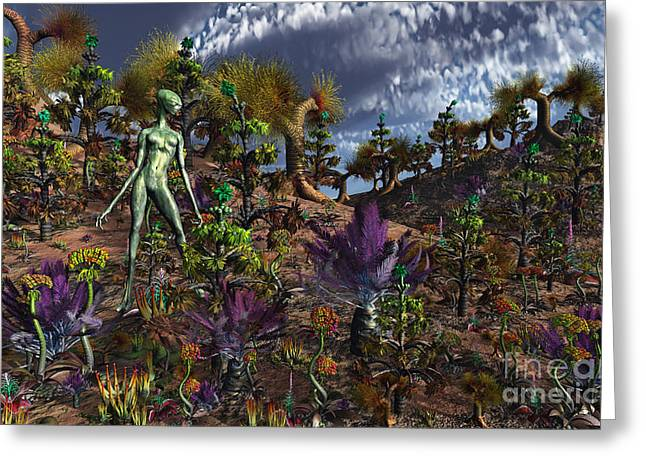 Recently Sold -  - Slavery Digital Art Greeting Cards - An Alien Being Surveys The Colorful Greeting Card by Mark Stevenson