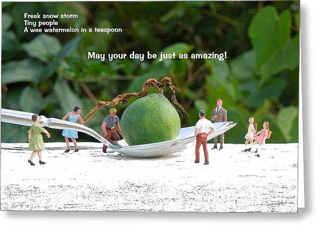 Watermelon Greeting Cards - An Amazing Day . sentiment Greeting Card by Renee Trenholm