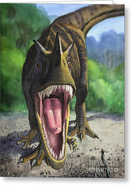 Looking At The Past Greeting Cards - An Angry Ceratosaurus Dentisulcatus Greeting Card by Sergey Krasovskiy
