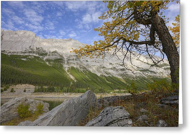 Attract Greeting Cards - An Autumn Afternoon Above Medicine Lake Greeting Card by Dan Jurak