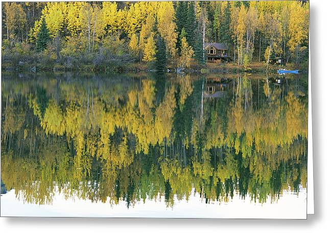 Log Cabins Greeting Cards - An Autumn View Of A Cabin Reflected Greeting Card by Rich Reid