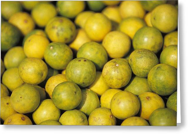 An Enticing Display Of Lemons Greeting Card by Jason Edwards
