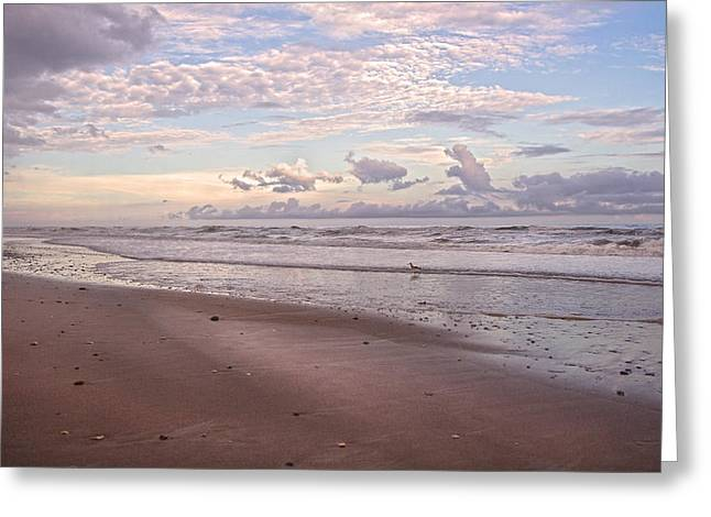 Topsail Island Greeting Cards - An Evening with Topsail Island Greeting Card by Betsy A  Cutler