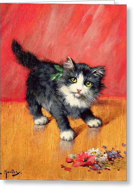 Kitten Greeting Cards - An Innocent Look  Greeting Card by Leon-Charles Huber