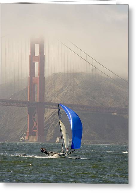 Small Forward Greeting Cards - An International 14 Skiff Sails Greeting Card by Skip Brown
