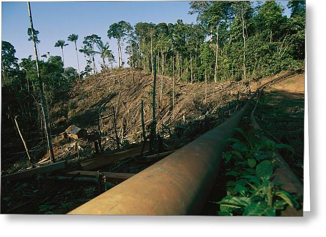 Overalls Greeting Cards - An Oil Pipeline Running Through Amazon Greeting Card by Steve Winter
