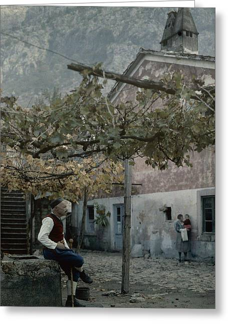Yugoslavian Greeting Cards - An Old Man Sitting Under His Grape Greeting Card by Wilhelm Tobien