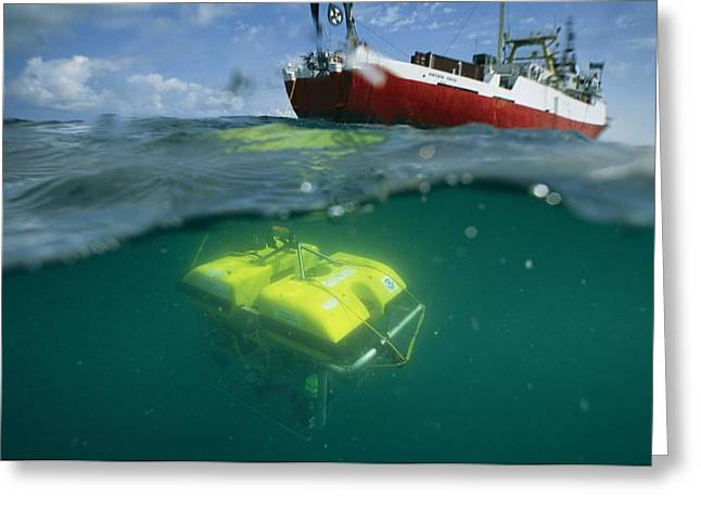 Aquatic Split Level Views Greeting Cards - An Unmanned Submersible Conducts Greeting Card by Randy Olson