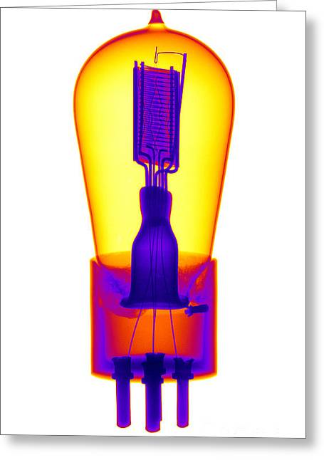 Xray Greeting Cards - An X-ray Of Historic Audion Vacuum Tube Greeting Card by Ted Kinsman