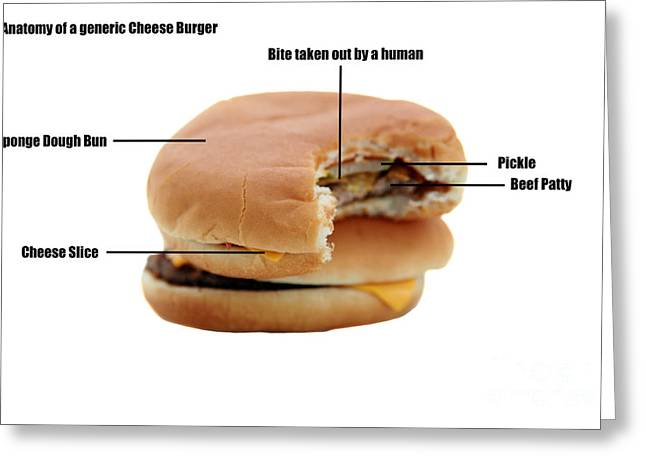 Cheese Burger Greeting Cards - Anatomy of a Generic Cheese Burger Greeting Card by Michael Ledray