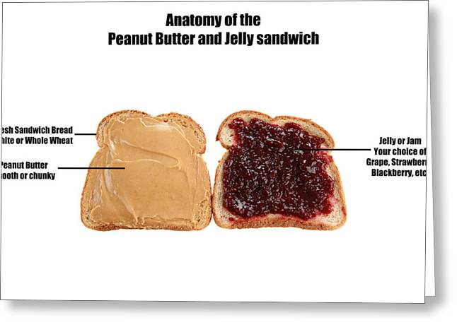 Toast Greeting Cards - Anatomy of a Peanut Butter and Jelly sandwich  Greeting Card by Michael Ledray