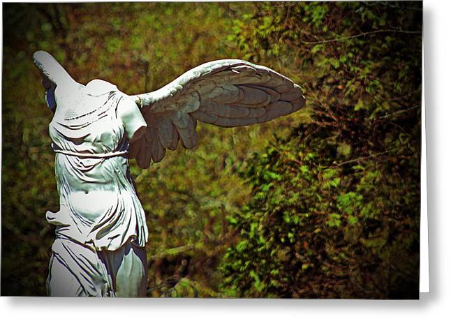 Ancient Flight Greeting Card by Nichole Leighton