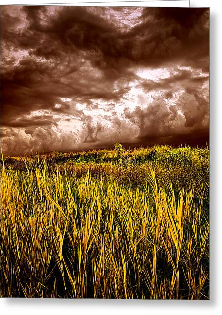 Geographic Greeting Cards - Ancient Rhymes Greeting Card by Phil Koch
