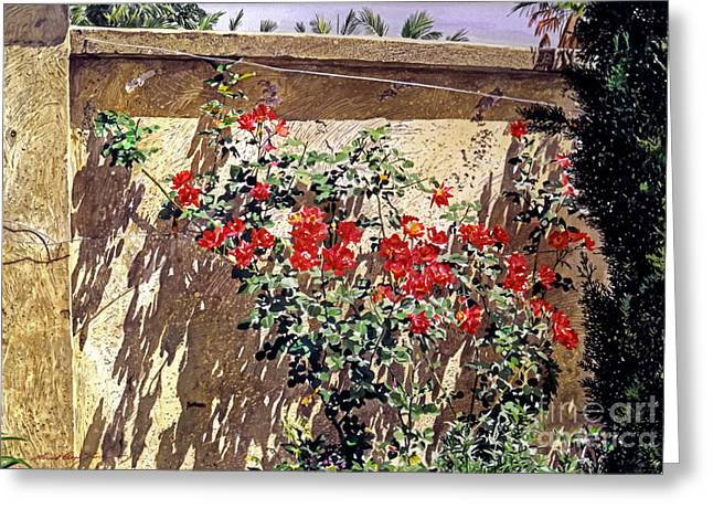 Southern Flowers Greeting Cards - Ancient Roses Greeting Card by David Lloyd Glover