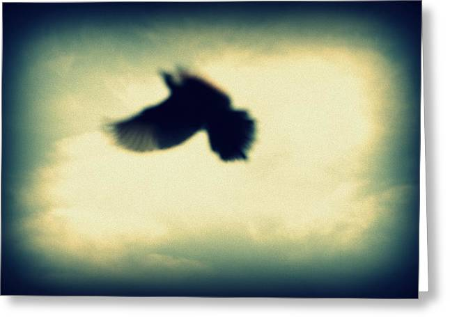 Healing Trauma Greeting Cards - And Still I Fly Greeting Card by Deborah Hall Barry