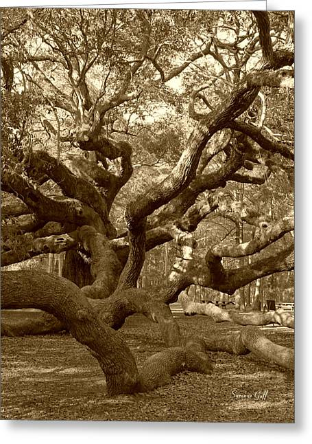 Tree Limbs Greeting Cards - Angel Oak in Sepia Greeting Card by Suzanne Gaff