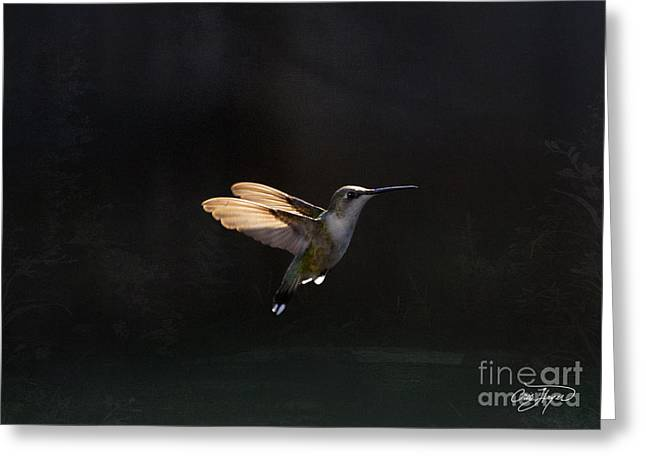 Angel Wings At Sunset Greeting Card by Cris Hayes