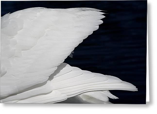 Angel Wings Greeting Card by Paulette Thomas
