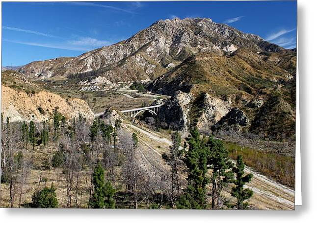 Angeles Forest Greeting Cards - Angeles National Forest Greeting Card by Caroline Lomeli