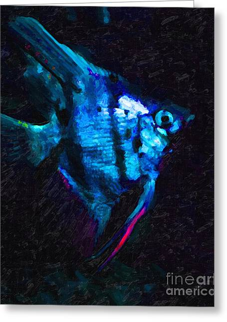 Fresh Water Fish Greeting Cards - Angelfish Greeting Card by Wingsdomain Art and Photography