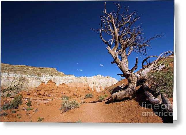 Kodachrome Greeting Cards - Angels Palace At Kodachrome Basin State Park - Utah Greeting Card by Adam Jewell