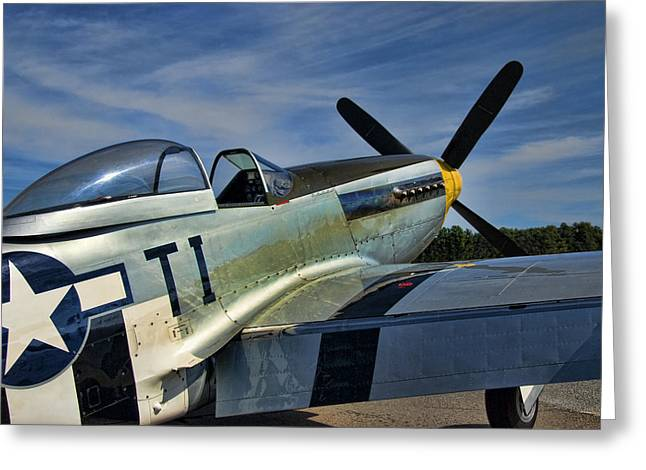 Playmate Greeting Cards - Angels Playmate P-51 Greeting Card by Steven Richardson
