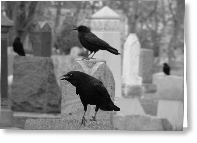 Ravens In Graveyard Greeting Cards - Angry Crow Greeting Card by Gothicolors Donna Snyder