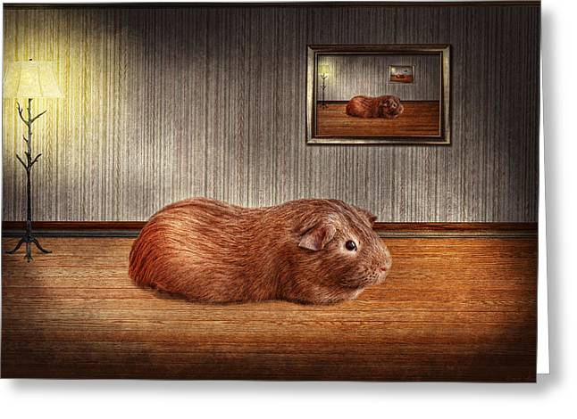 Animal - The guinea pig Greeting Card by Mike Savad