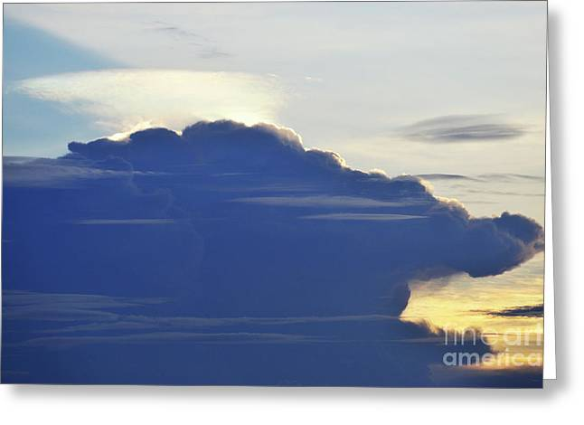 Ominous Sky Greeting Cards - Animal head in sky Greeting Card by Sami Sarkis