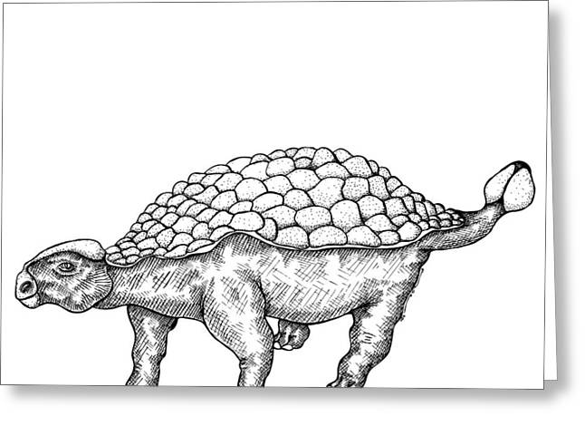 Ink Outlines Greeting Cards - Ankylosaurus - Dinosaur Greeting Card by Karl Addison
