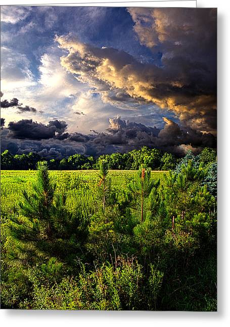 Geographic Greeting Cards - Another Day Greeting Card by Phil Koch