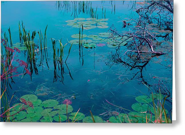 Eco System Greeting Cards - Another World VII Greeting Card by Joanne Smoley