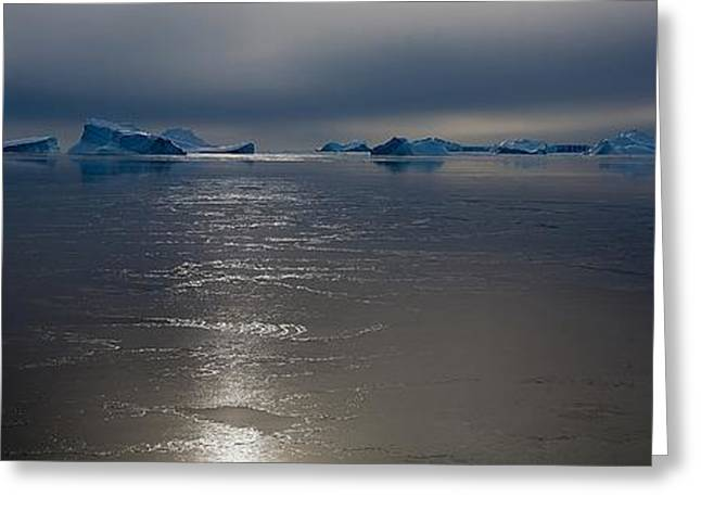 Division Greeting Cards - Antarctic Landscape 117 Greeting Card by David Barringhaus