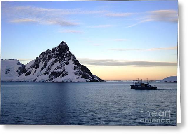 Antarctica Greeting Card by Karen Kean