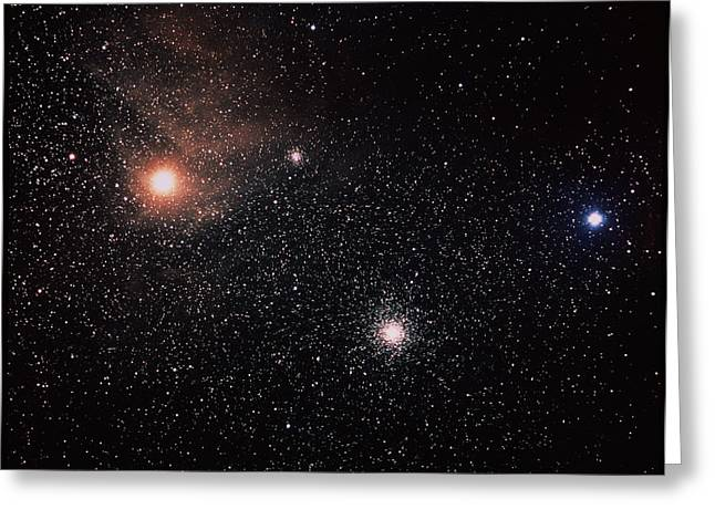 Star Evolution Greeting Cards - Antares & Starfield Greeting Card by Luke Dodd