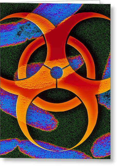 Terrorism Greeting Cards - Anthrax Bacteria And Biohazard Symbol Greeting Card by Pasieka