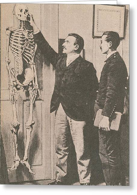 Bertillon Greeting Cards - Anthropometry Greeting Card by Photo Researchers