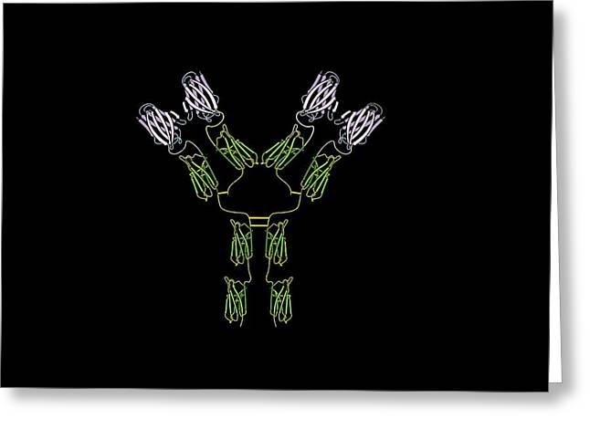 Light Chains Greeting Cards - Antibody, Artwork Greeting Card by Francis Leroy, Biocosmos
